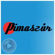 Pimaszúr